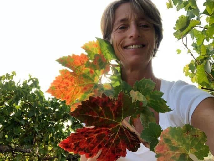 Interview décalée : Diane Losfelt – Directrice générale du Château de Lengarran